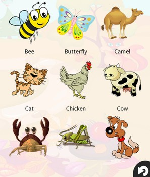 英語で動物