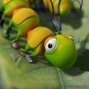 Caterpillar Shoes