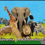 動物たちの登場する英語アニメソング