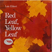 英語絵本「Red Leaf, Yellow Leaf」