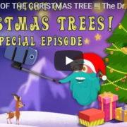 「STORY OF THE CHRISTMAS TREE !!」