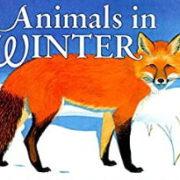 英語絵本「Animals in Winter」